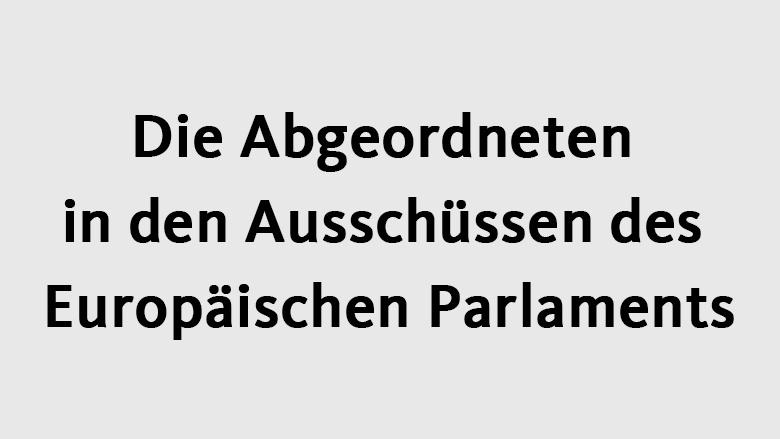 Die Abgeordneten In Den Ausschüssen Des Europäischen Parlaments