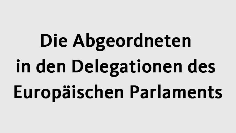 Die Abgeordneten In Den Delegationen Des Europäischen Parlaments