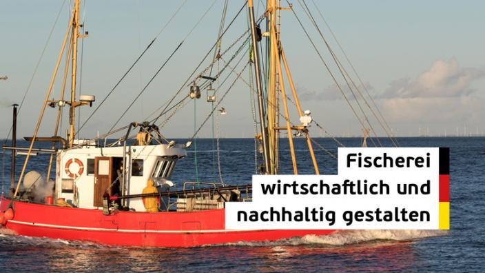 Fischereipolitik: wirtschaftlich und ökologisch gestalten