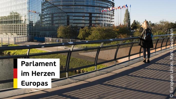 Europaparlament sollte über seinen Sitz selbst entscheiden